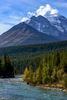 Icefields Parkway (Highway 93), AlbertaImage no: 16-383596  Click HERE to Add to Cart