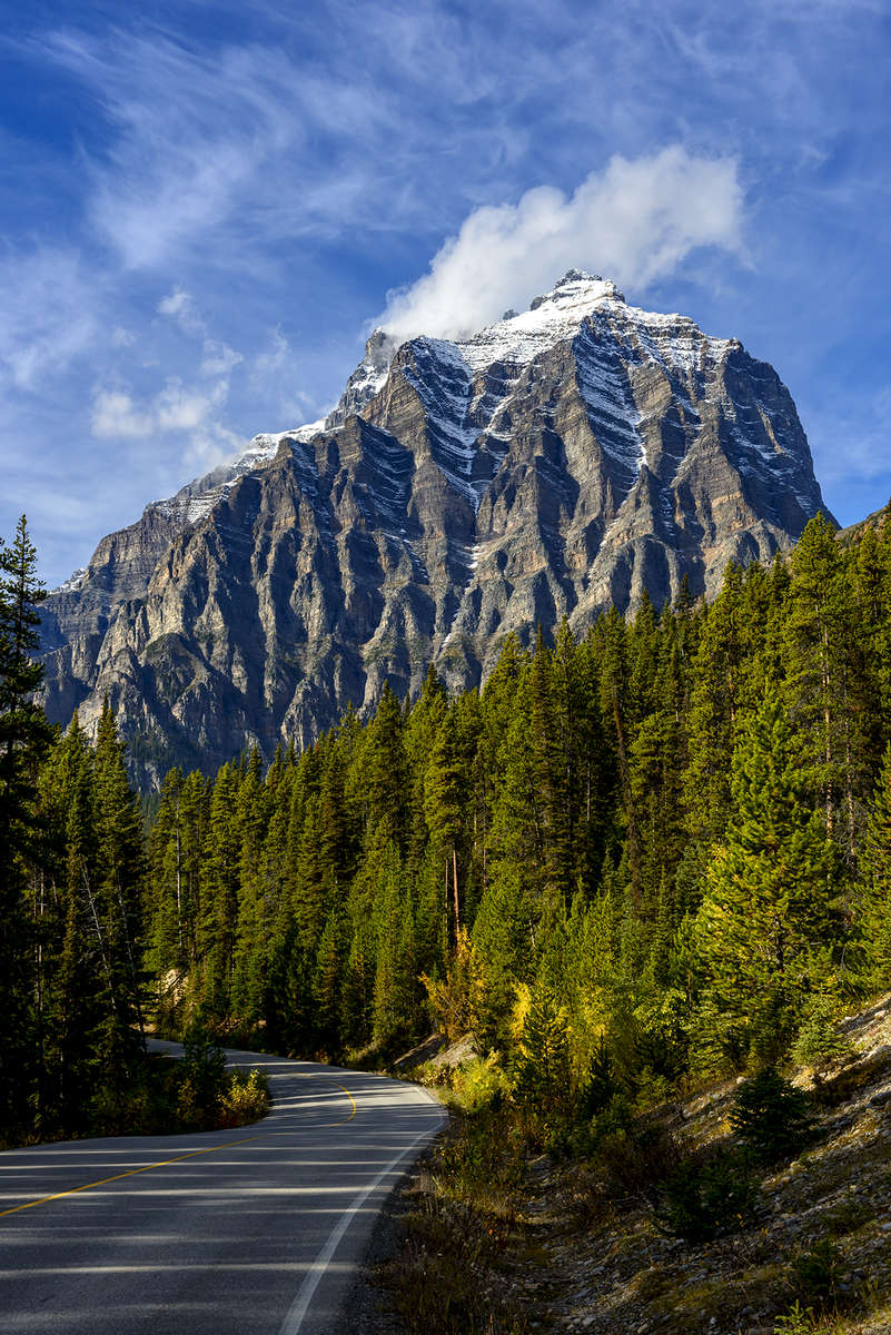 Icefields Parkway (Highway 93), AlbertaImage no: 16-383609  Click HERE to Add to Cart