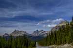 Icefields Parkway (Highway 93), AlbertaImage no: 16-383733  Click HERE to Add to Cart