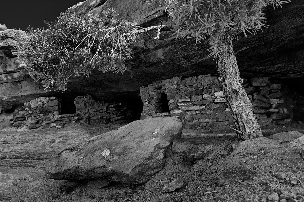 Canyonlands National Park, UtahImage No: 15-046969-bw   Click HERE to Add to Cart
