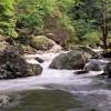 Great Smoky Mountains National Park,Tennessee, USAImage no: 080444.17Click HERE to add to cart