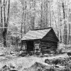 Appalachia, Cades Cove Loop, Tennessee, USAImage no: 080501.10Click HERE to Add to Cart
