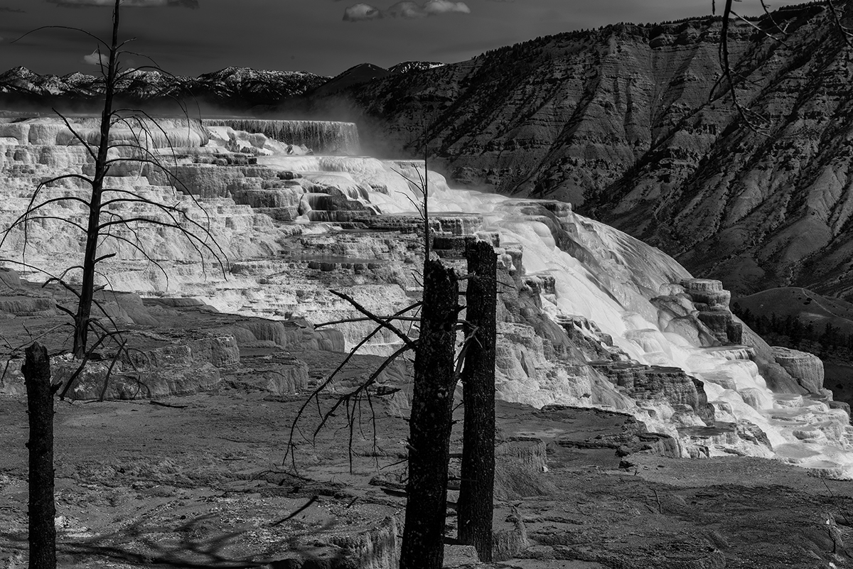Mammoth Hot Springs, Wyoming, USAImage No: 17-009149-bw   Click HERE to Add to Cart