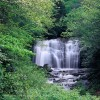 Great Smoky Mountains National Park,Tennessee, USAImage no: 080444.03Click HERE to add to cart