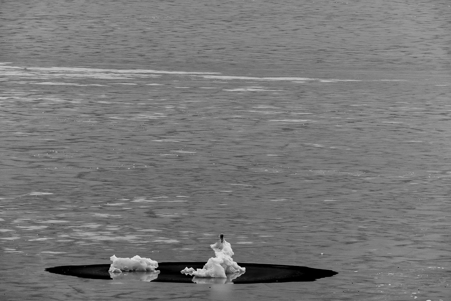 Mendenhall Lake, Alaska, USAImage No: 14-024833-BW  Click HERE to Add to Cart