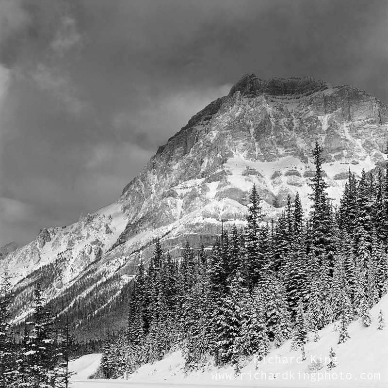 Icefields Parkway, Rocky Mountains,Banff National Park, Alberta, CanadaImage no: 080791.09Click HERE to Add to cart