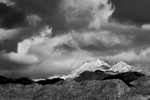 Patagonia, Arizona, USAImage no: 19-001100-bwClick HERE to Add to Cart