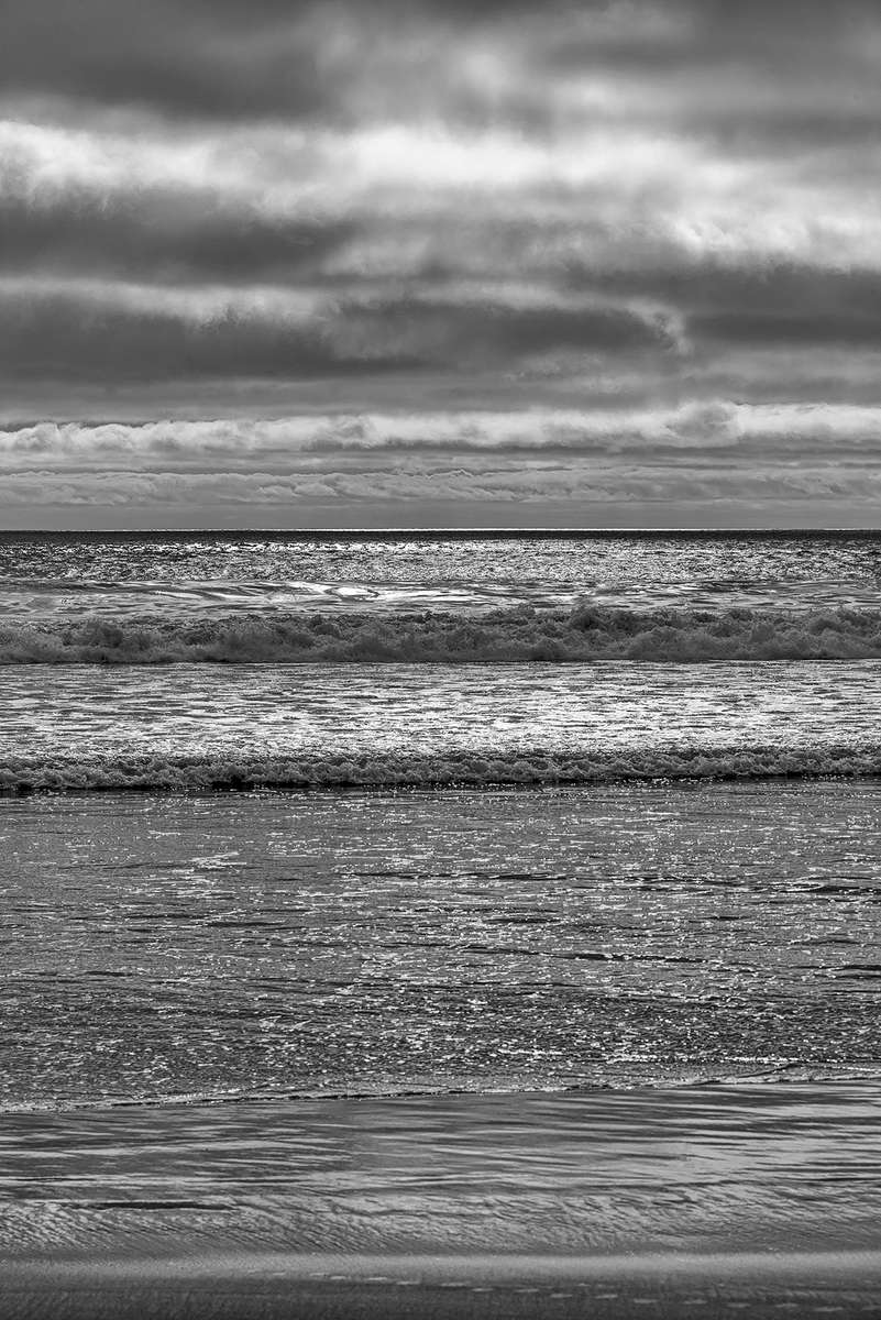Near San Diego, Southern California, USAImage no: 16-002496-bw   Click HERE to Add to Cart