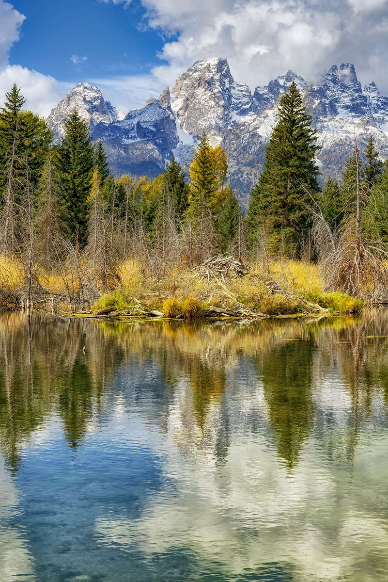 Morning Reflection in front of the Grand TetonsImage no: 17-018202   Click HERE to Add to Cart