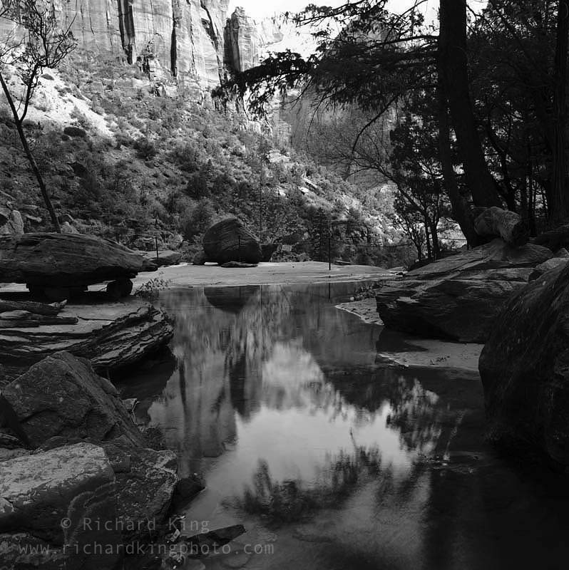 Zion National Park, Utah, USAImage no: 020871.09Click HERE to add to cart