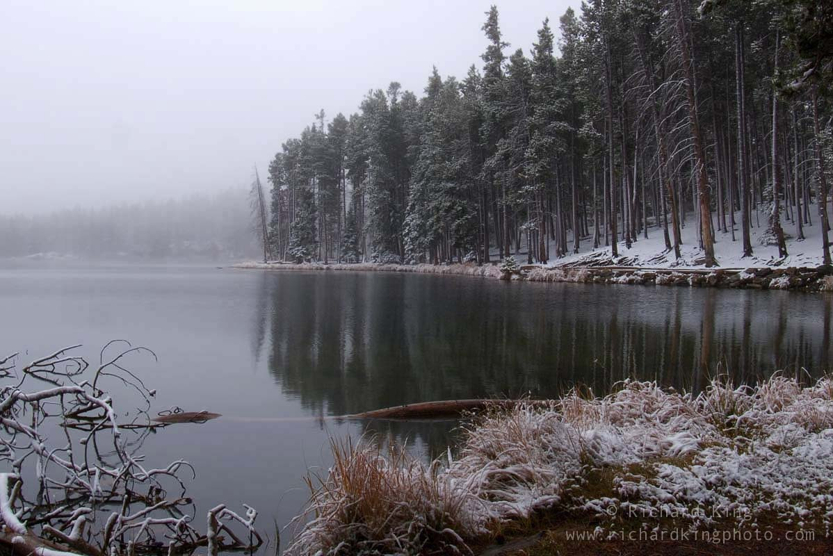 A snowy day in the Rockies, Rocky Mountain National Park, Colorado, USAImage no: 060596.02  Click on link to add to cart  http://bit.ly/9HRnVQ
