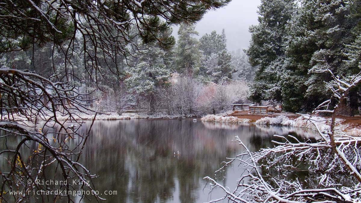 A snowy day in the Rockies, Rocky Mountain National Park, Colorado, USAImage no: 060596.12  Click on link to add to cart  http://bit.ly/9UqoxP