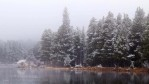 A snowy day in the Rockies, Rocky Mountain National Park, Colorado, USAImage no: 060596.07  Click on link to add to cart  http://bit.ly/9V87K4