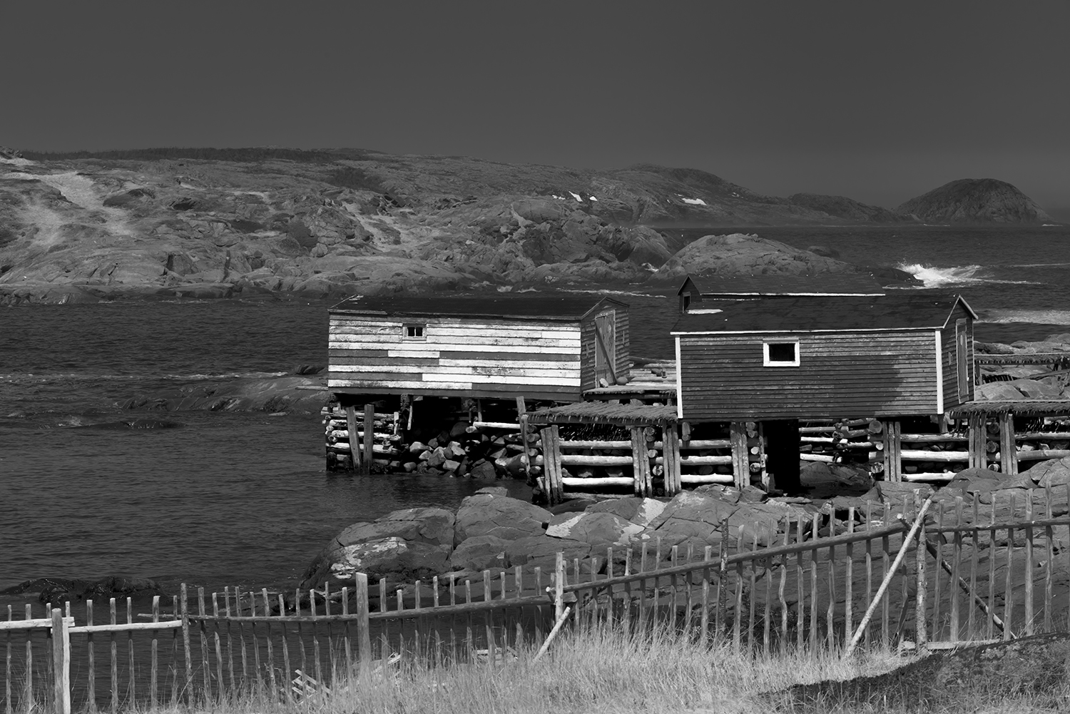 Newfoundland, CanadaImage no: 19-007486-bw  Click HERE to Add to Cart