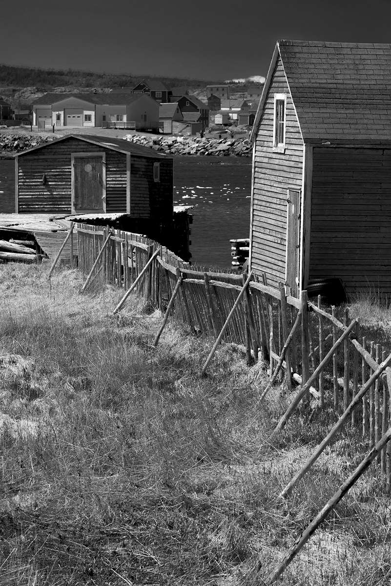 Newfoundland, CanadaImage no: 19-007542-bw  Click HERE to Add to Cart