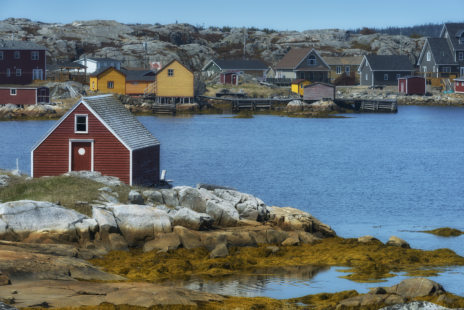 Newfoundland, CanadaImage No: 19-007448  Click HERE to Add to Cart