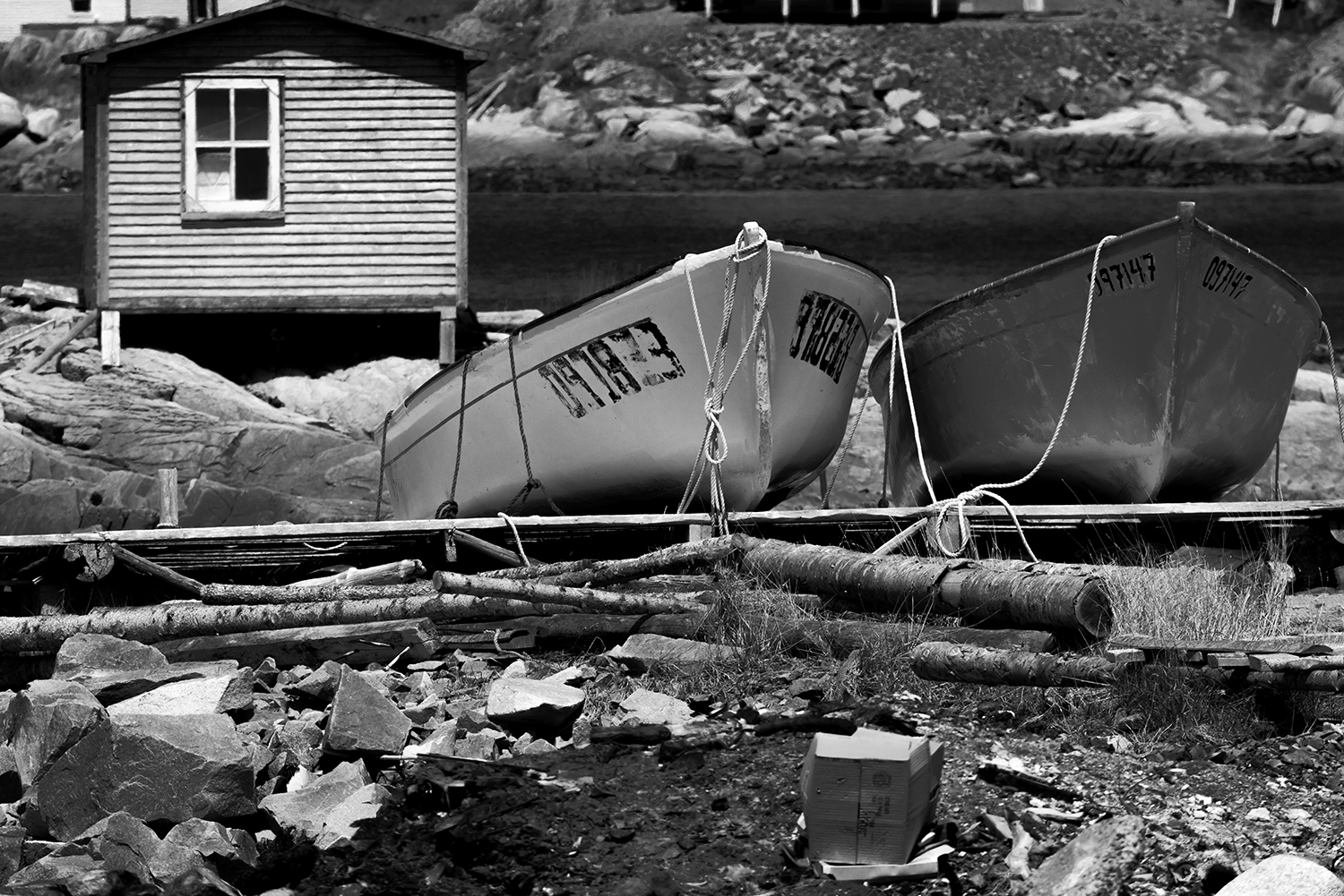 Newfoundland, CanadaImage no: 19-007603-bw  Click HERE to Add to Cart