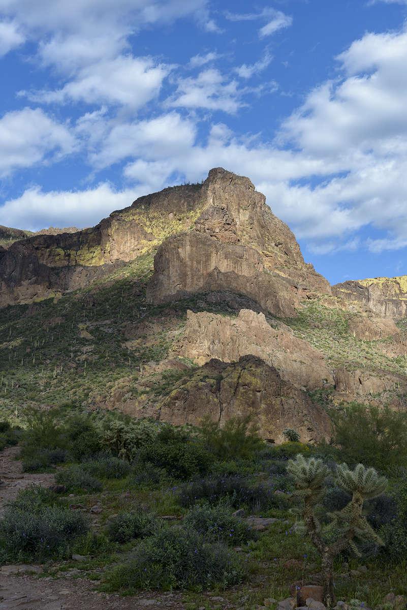 Tortilla Flats, ArizonaImage No: 19-002803Click HERE to Add to Cart