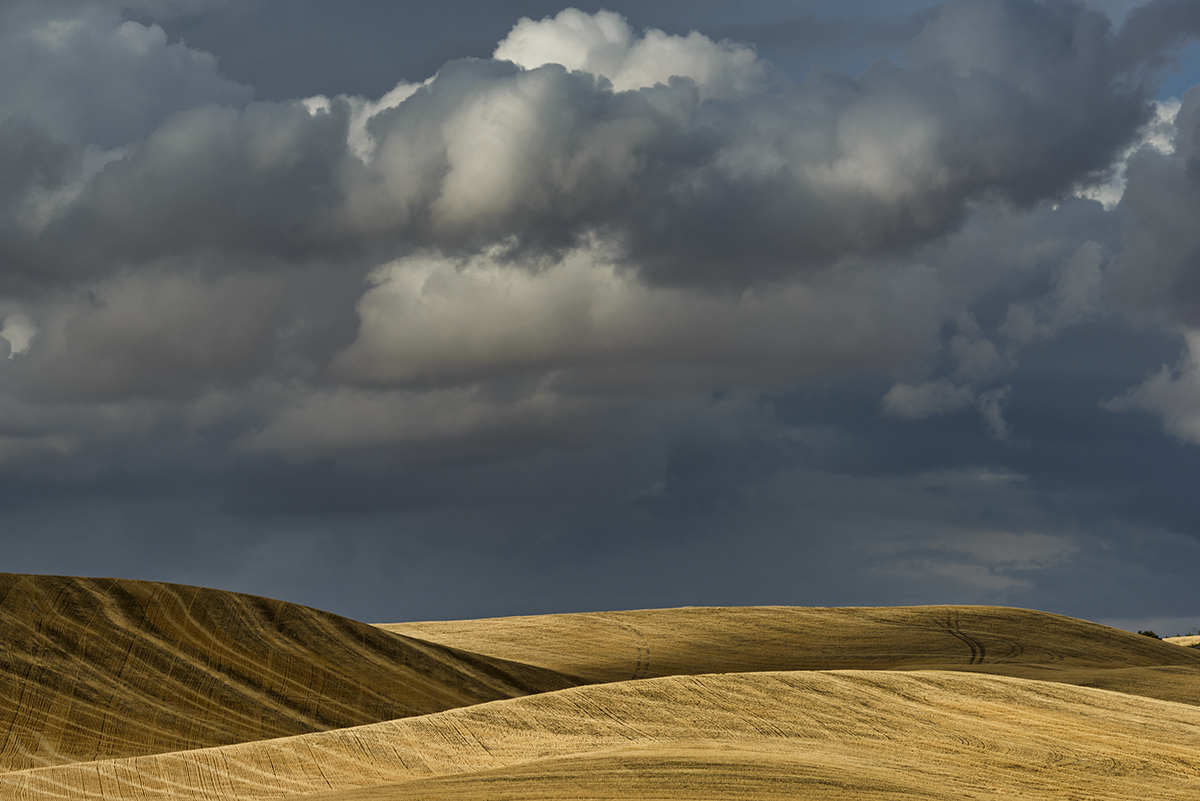 Landscapes from The Palouse in southeast WashingtonImage no: 17-017370   Click HERE to Add to Cart