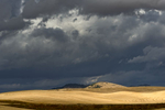 Landscapes from The Palouse in southeast WashingtonImage no: 17-017336  Click HERE to Add to Cart
