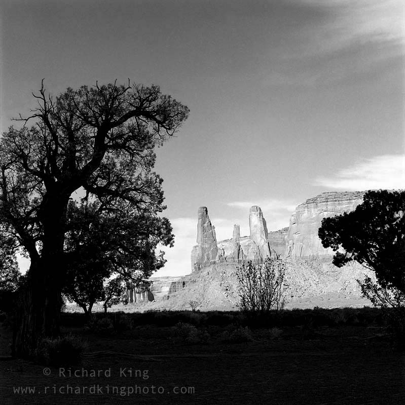 Monument Valley, Navajo Nation,Arizona, USAImage no: 021211.08Click HERE to add to cart