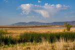 Landscape Images from Utah USA
