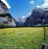 Berner Oberland, SwitzerlandImage no: 050314.18Click HERE to Add to Cart