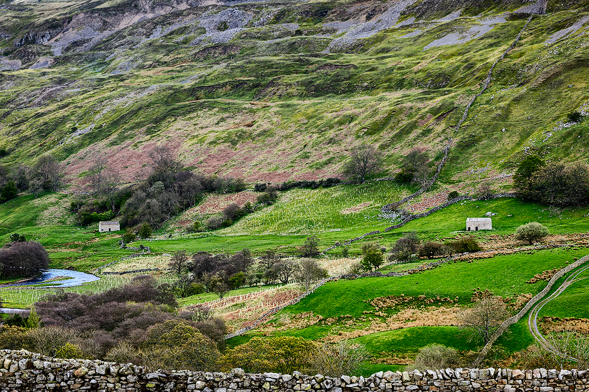 Yorkshire Dales National Park, EnglandImage No: 12-015743 Click HERE to add to cart