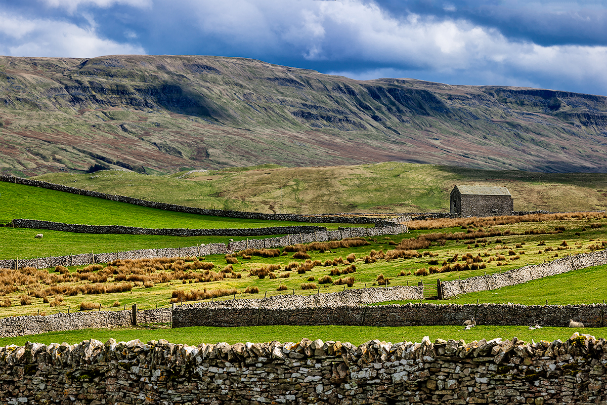 Yorkshire Dales National Park, EnglandImage No: 12-014340 Click HERE to add to cart