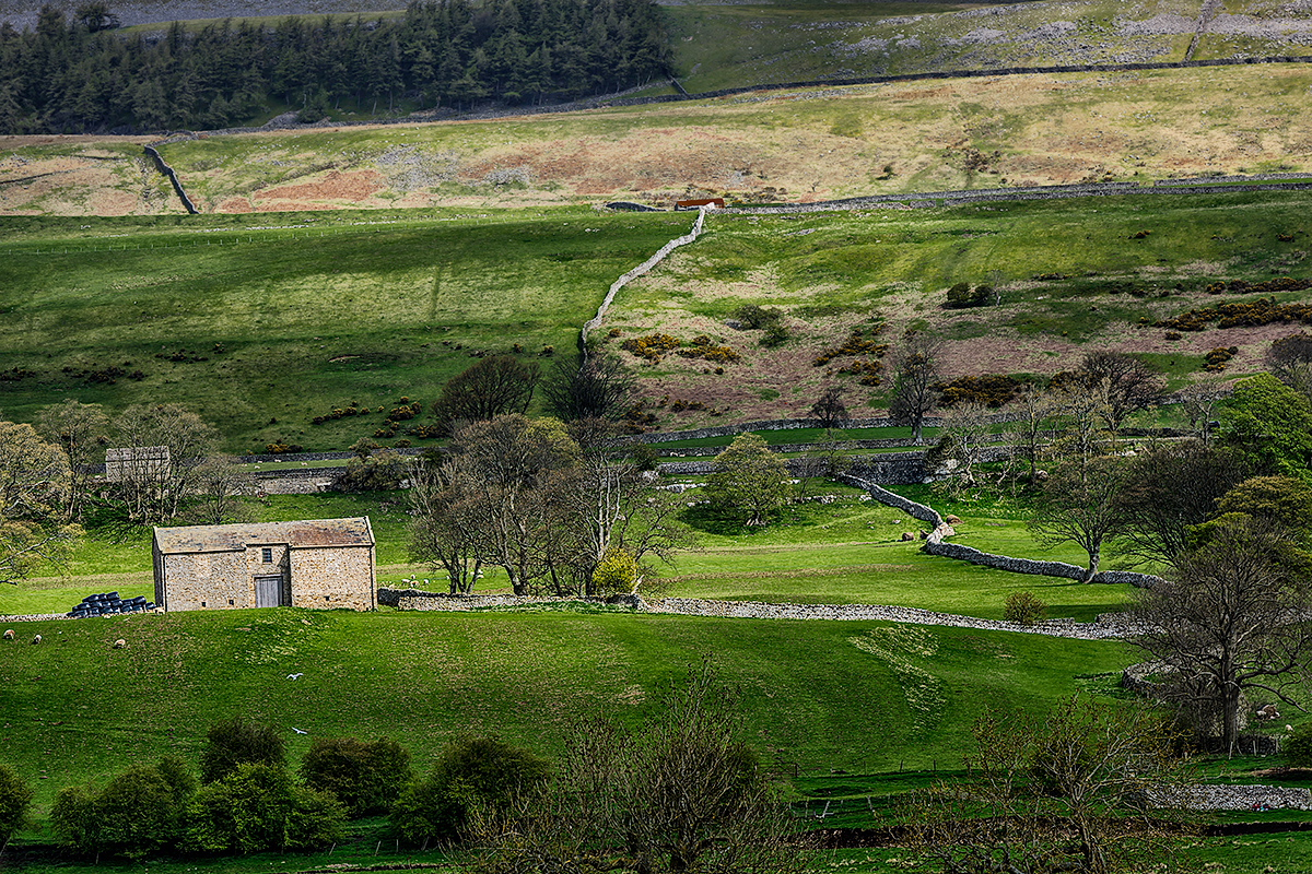 Yorkshire Dales National Park, EnglandImage No: 12-014445 Click HERE to add to cart