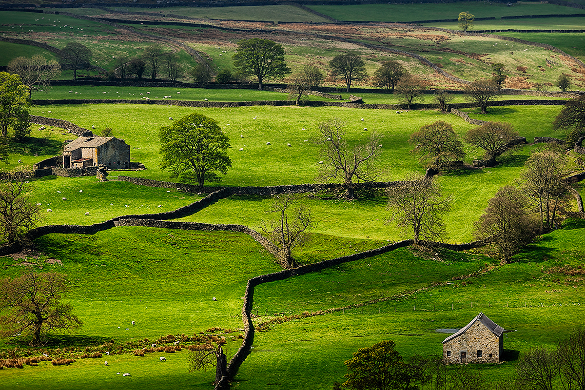 Yorkshire Dales National Park, EnglandImage No: 12-015107 Click HERE to add to cart