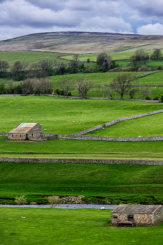 Yorkshire Dales National Park, EnglandImage No: 12-015690 Click Here to Add To Cart