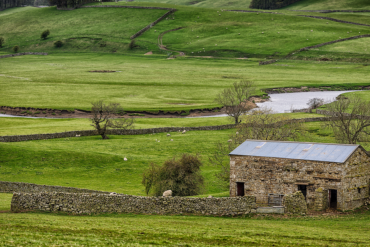 Yorkshire Dales National Park, EnglandImage No: 12-015768 Click HERE to add to cart
