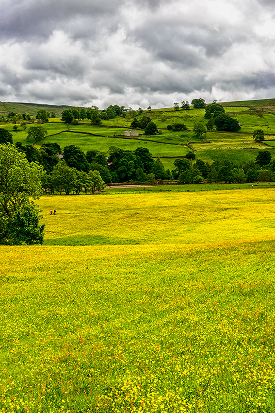 Yorkshire_Dales_National_Park_13-028473_vv