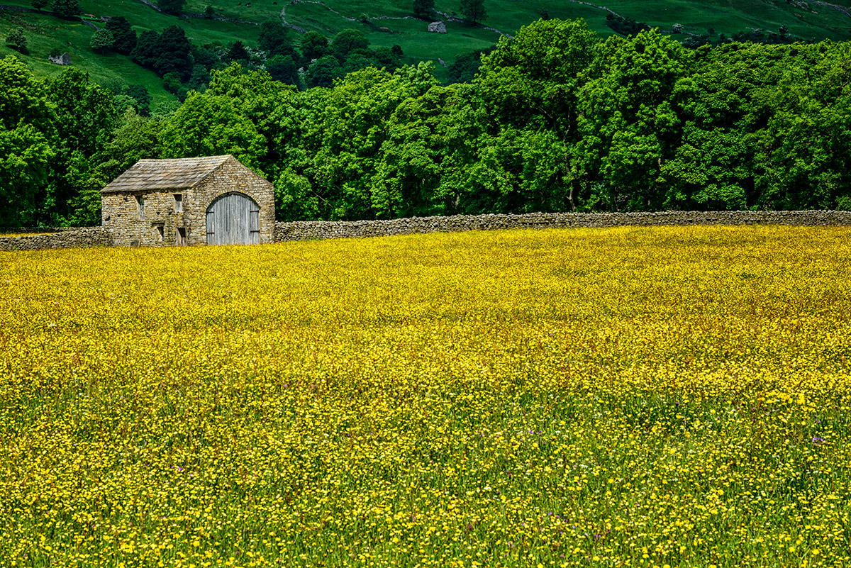 Yorkshire_Dales_National_Park_13-028934_vv