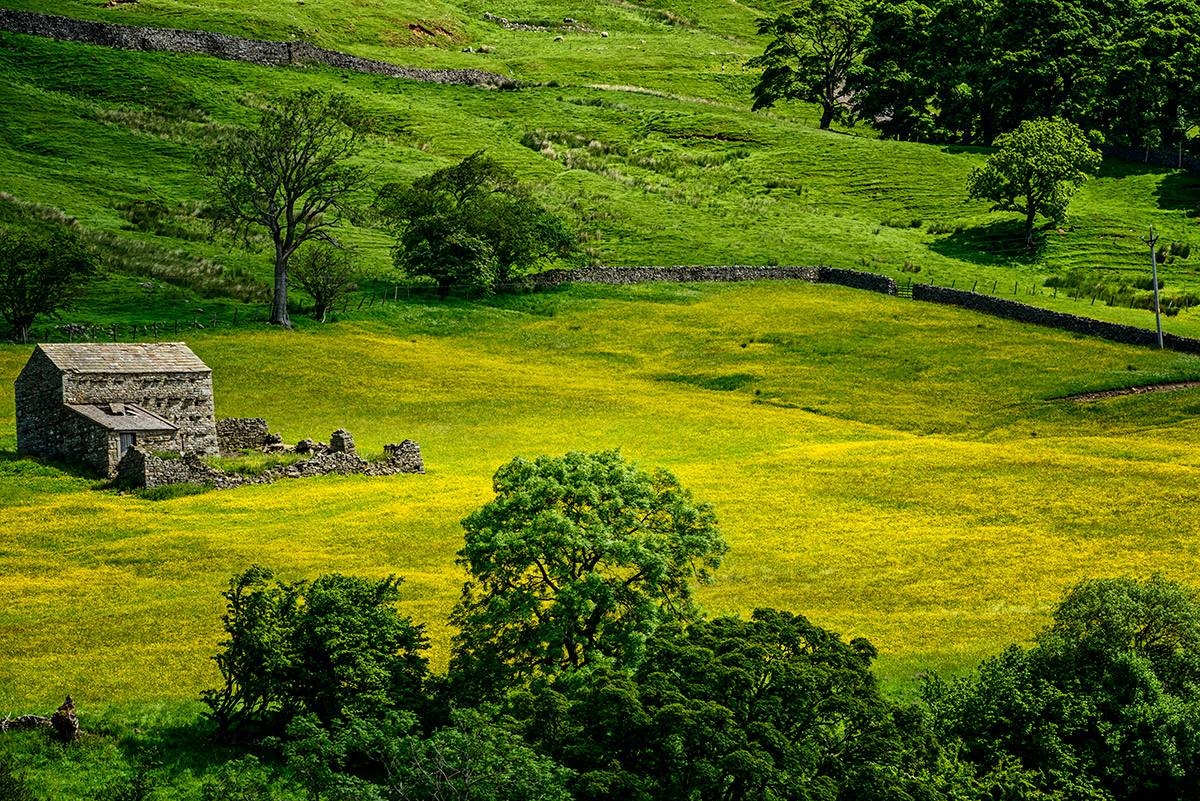 Yorkshire_Dales_National_Park_13-028973_vv
