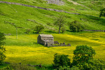 Yorkshire_Dales_National_Park_13-028991_vv