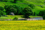 Yorkshire_Dales_National_Park_13-029004_vv