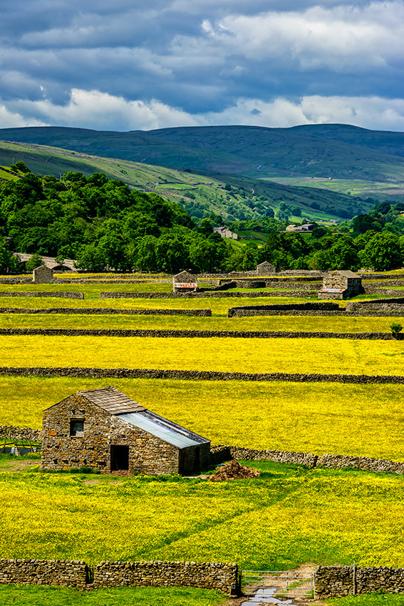 Yorkshire_Dales_National_Park_13-029082_vv