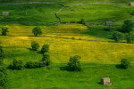 Yorkshire_Dales_National_Park_13-029478_vv