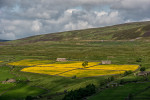 Yorkshire_Dales_National_Park_13-029488_vv
