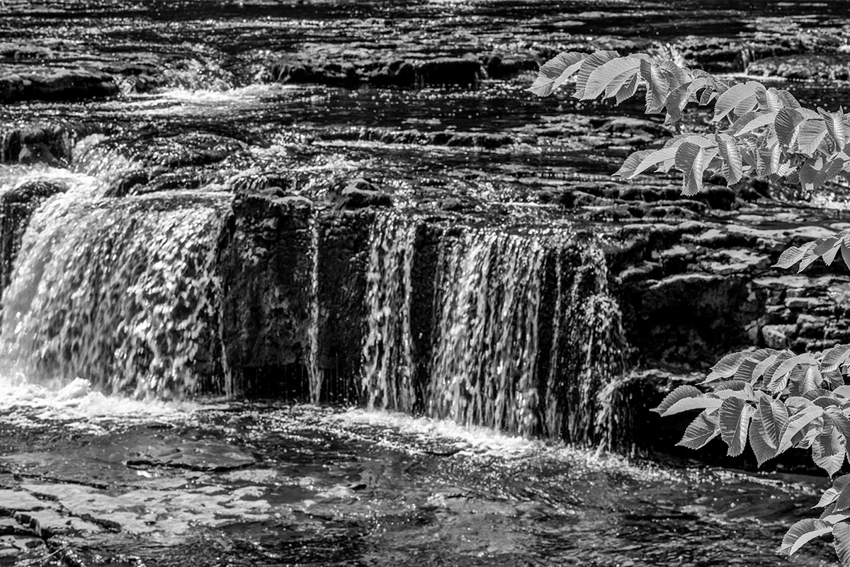 Yorkshire_Dales_National_Park_13-029674_bw_vv