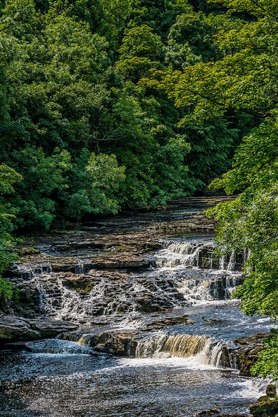 Yorkshire_Dales_National_Park_13-029731_vv