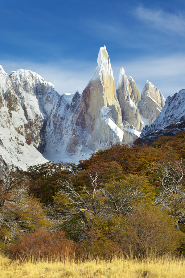 Cerro Torre was rarely clearly in full view but I was in luck while doing the 3 hour trek to Laguna Torre to meet up with the group. Alas, by the time I reached the lake, it was all clouded over but I was glad to have stopped to shoot along the way.