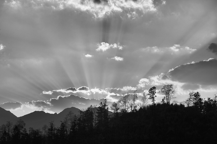 The rays of light from the setting sun was not obvious in the colour version of this photo. It was only after conversion to monochrome did it came out in full glory.