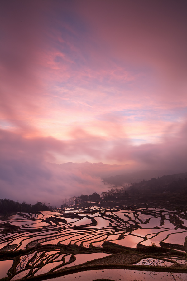 The fiery sunrise was getting more and more intense as the colours bounced back off the waters in the terraces.