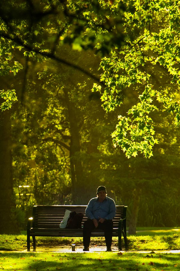 Went to my favourite park to get shots of the Pacific Black Ducks. The light was however still not soft enough and while waiting, I chanced upon the man on the bench. Moved a little to my left and the backlit leaves filled the frame nicely.