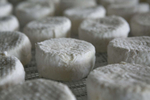 Wheels of Adelle cheese age at Ancient Heritage Dairy in Portland in one of their cheese caves, February 10, 2015. This award-winning cheese is a bloomy-rind cheese made with pasteurized cow and sheep's milk. Kristyna Wentz-Graff/Staff