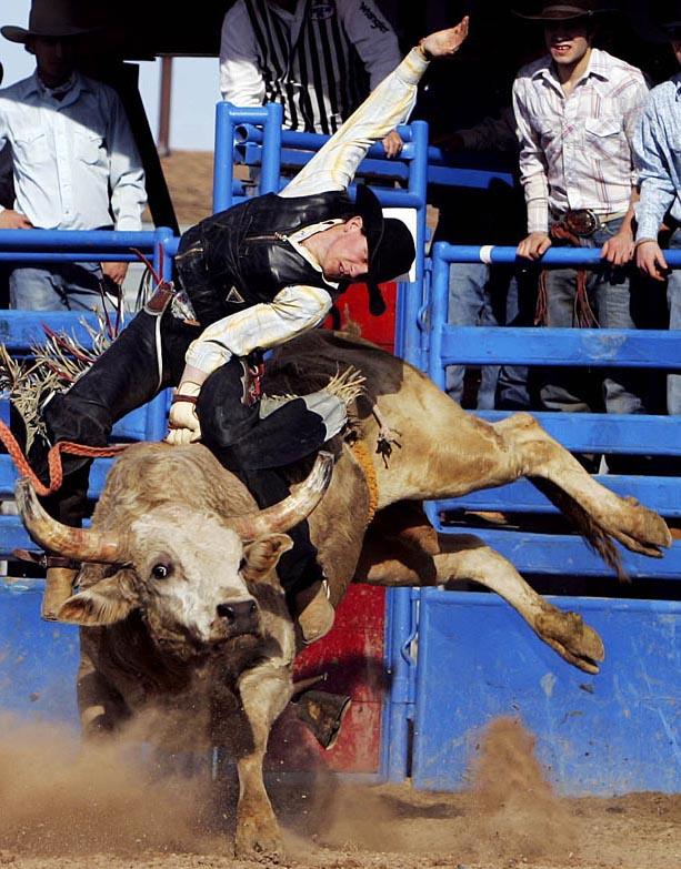 24_Rodeo-p5