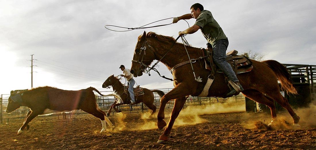 27_Rodeo-p1